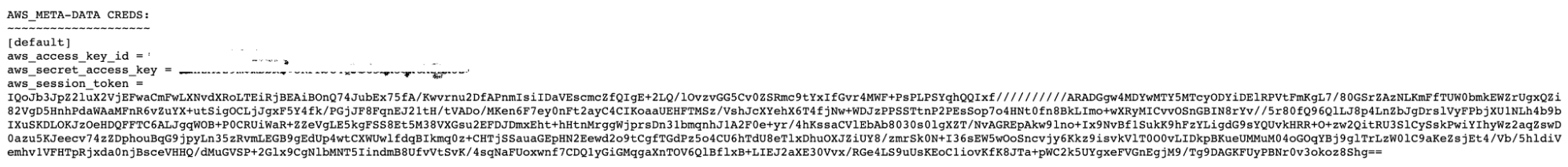 Example of Stolen Credentials File
